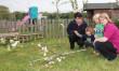Vandals destroy nursery orchard