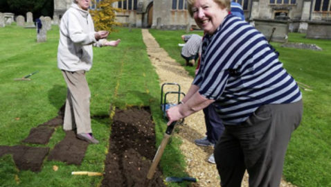 Crocuses in bloom  for polio charity