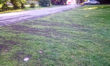 Outrage as 'inconsiderate' parking destroys Melksham House grass