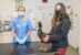 An interesting case to  quack for Melksham vets!